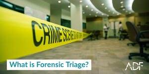What is Forensic Triage?