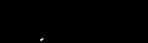 cdfs-new-logo