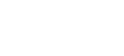 ADF Solutions Logo - White Digital Forensics