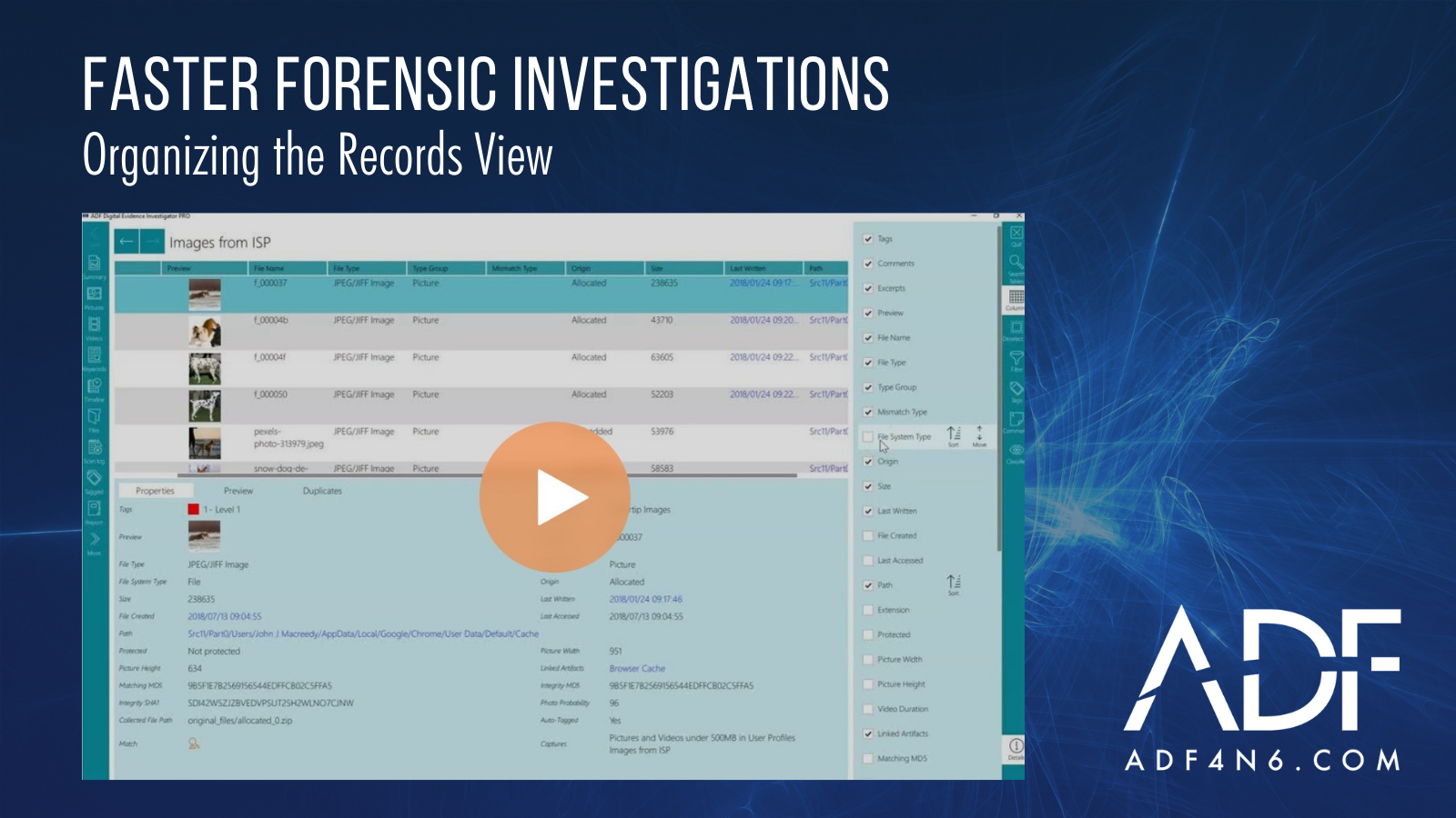 Organizing the Records View for Faster Forensic Investigations