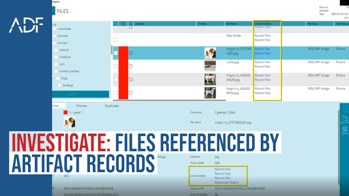 Investigate: Files Referenced by Artifact Records